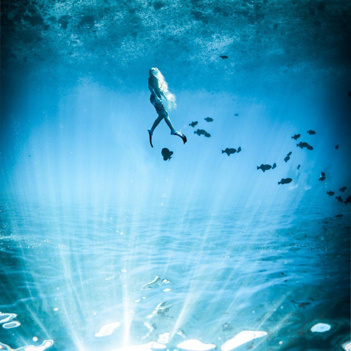 snorkel blue room innovation